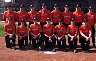 Coyotes Varsity Baseball Standings Suffer Set Back due to Rules Violation